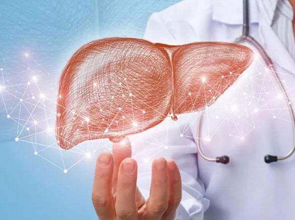 前列腺癌、结直肠癌、肝癌,美国有哪些治疗新进展?