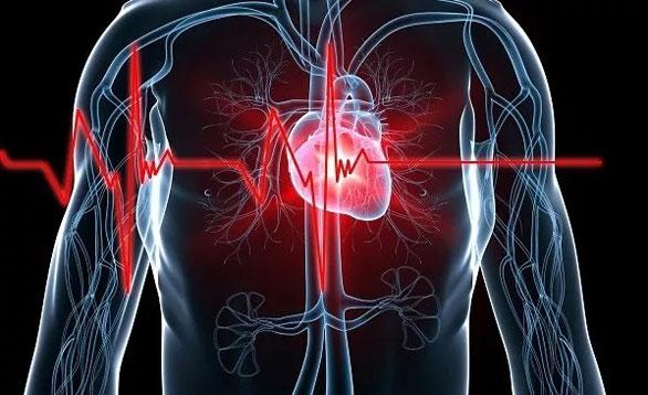 不只改写癌症治疗史,CAR-T疗法还能治心脏病?