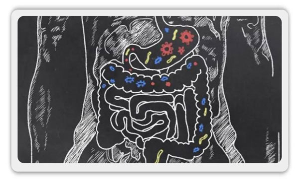 """便便打败""""超级细菌""""!粪菌移植治疗艰难梭菌,完胜抗生素"""